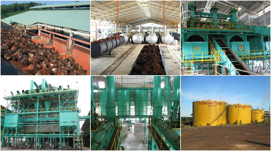 palm oil milling manufacturer and company in China