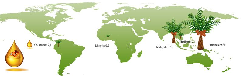 palm oil production in the main countries